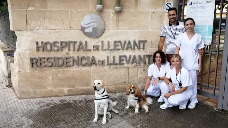 Terapia Asistida con Perros en Complex Sanitari de Llevant